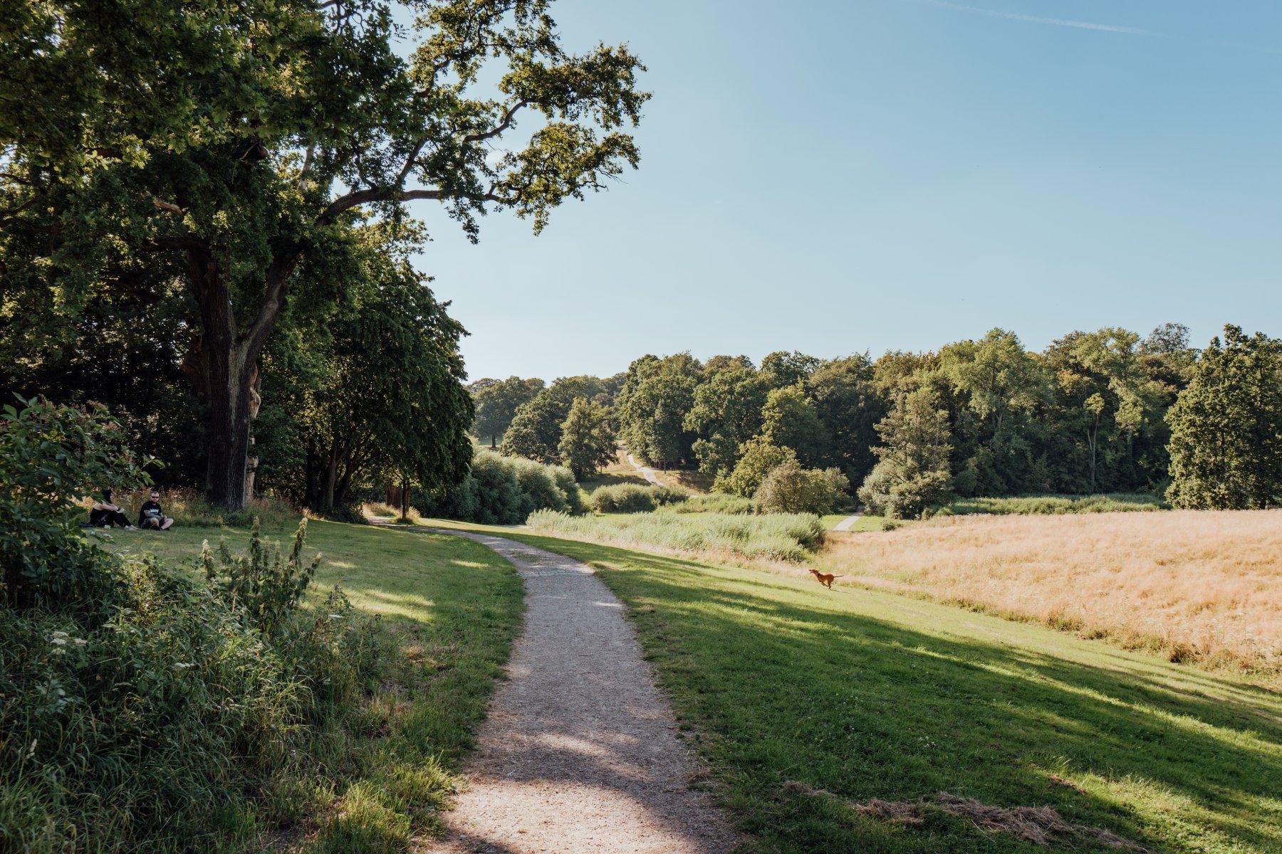 Geheimtipp Hamburg Othmarschen Natur & Ausflüge Grüne Ecken Jenischpark 11