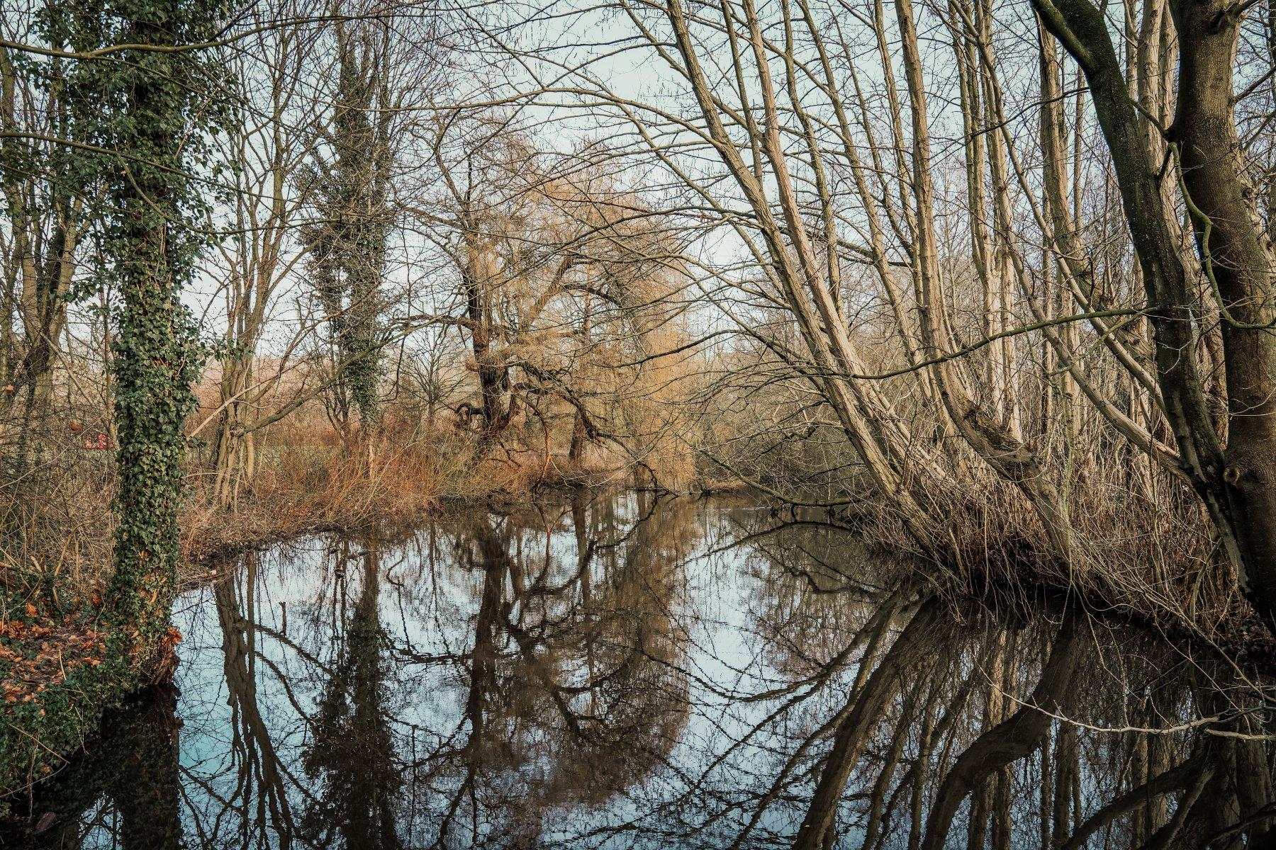 geheimtipp hamburg Eichtalpark Wandsbek wald natur linus kross0