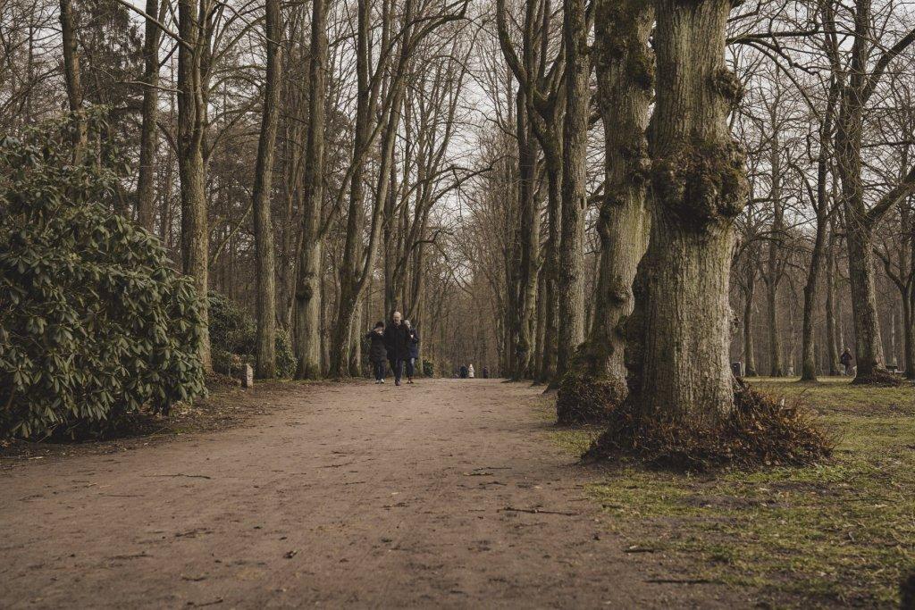 geheimtipp hamburg volkspark wald natur linus kross 11