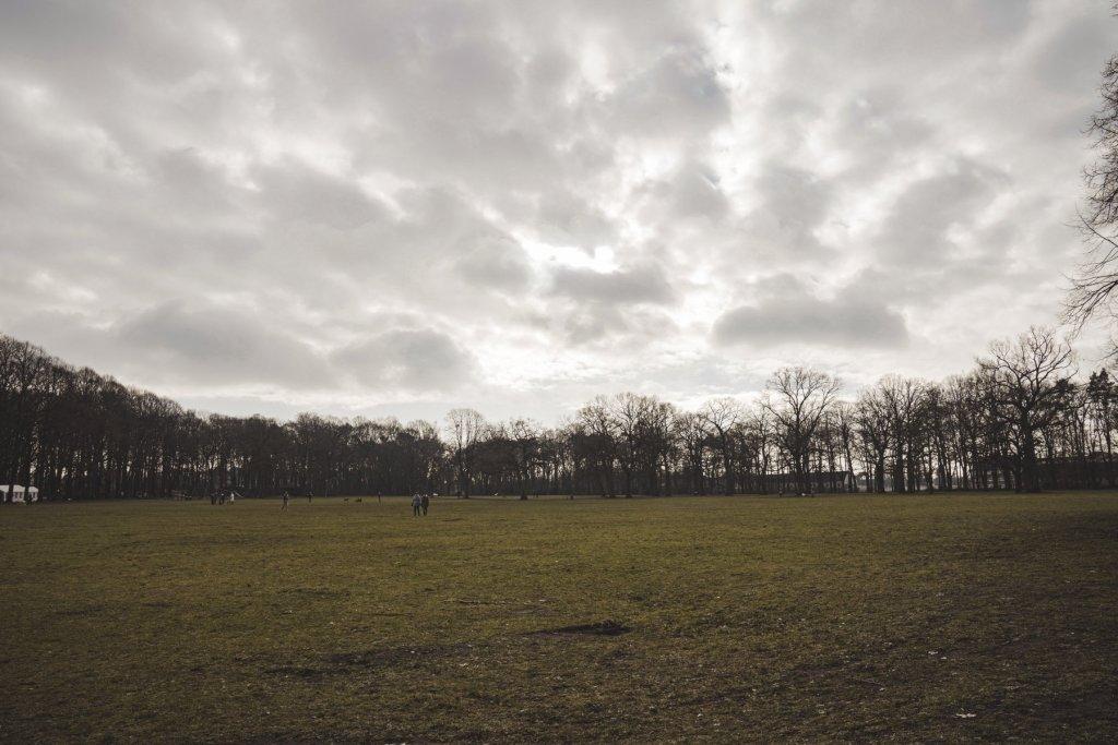 geheimtipp hamburg volkspark wald natur linus kross 12