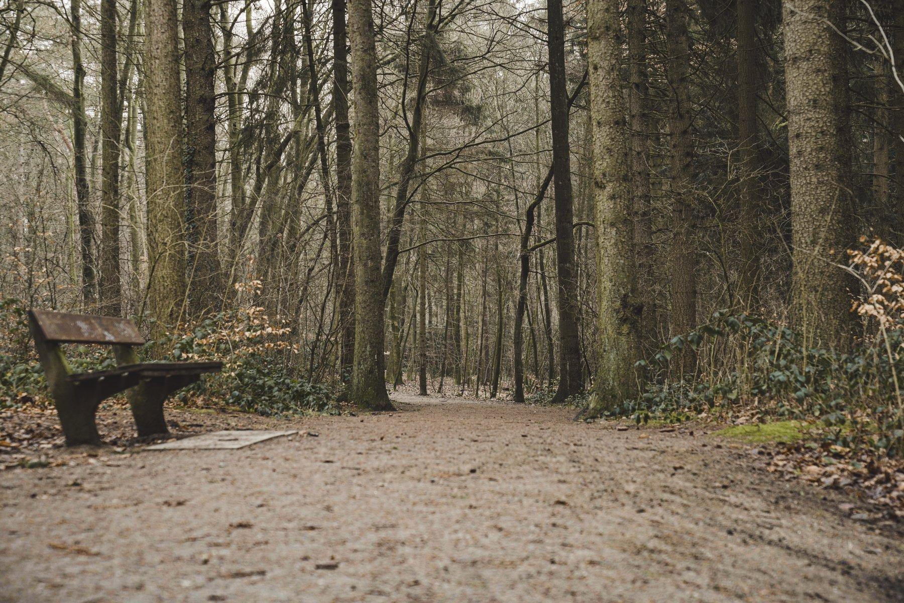 geheimtipp hamburg volkspark wald natur linus kross 16