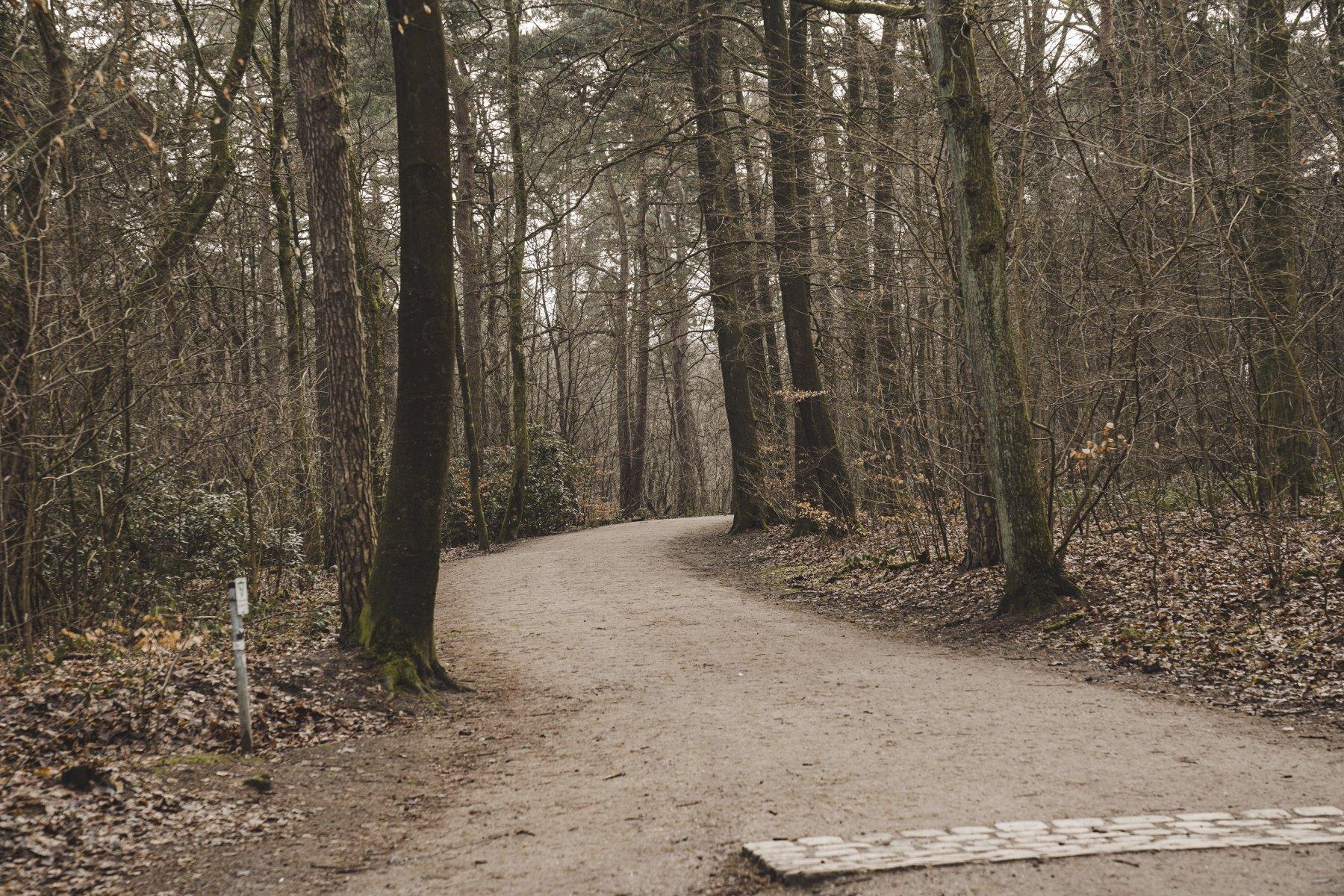 geheimtipp hamburg volkspark wald natur linus kross 24