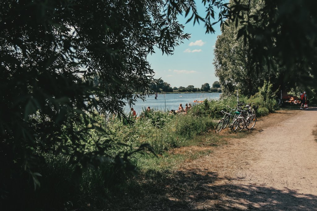 Wasserpark Dove Elbe Hamburg