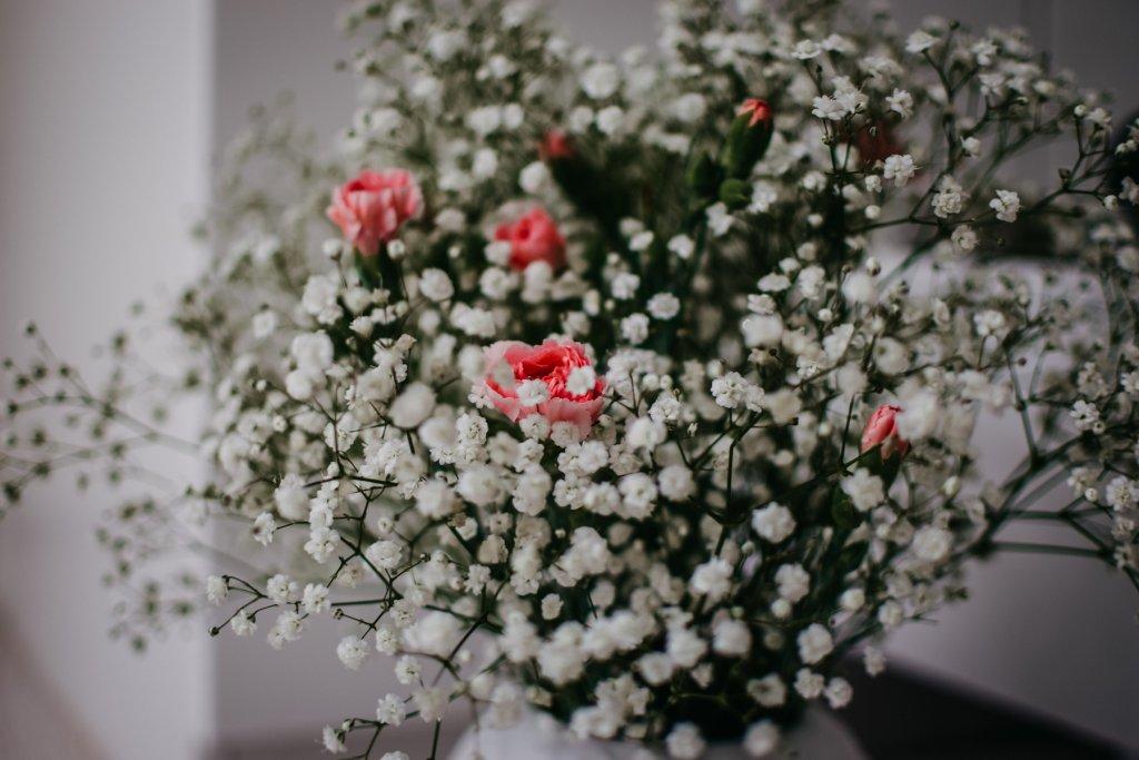 So zart und hübsch! – ©Unsplash