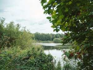 Geheimtipp Hamburg Natur & Ausflüge grüne Ecken Wandse 6