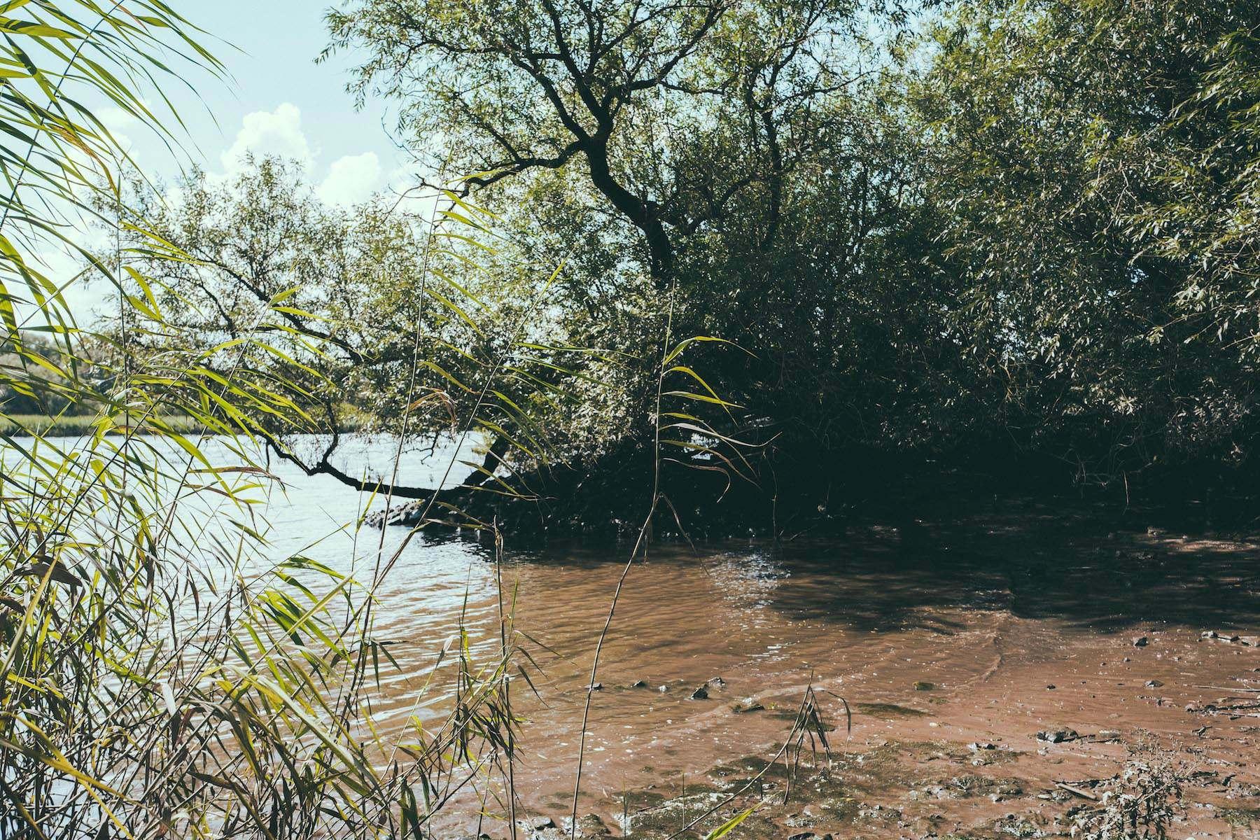 Geheimtipp Hamburg Natur & Ausflüge Wilhemsburg Naturschutzgebiet Heuckenlock Cristina Lopez 6