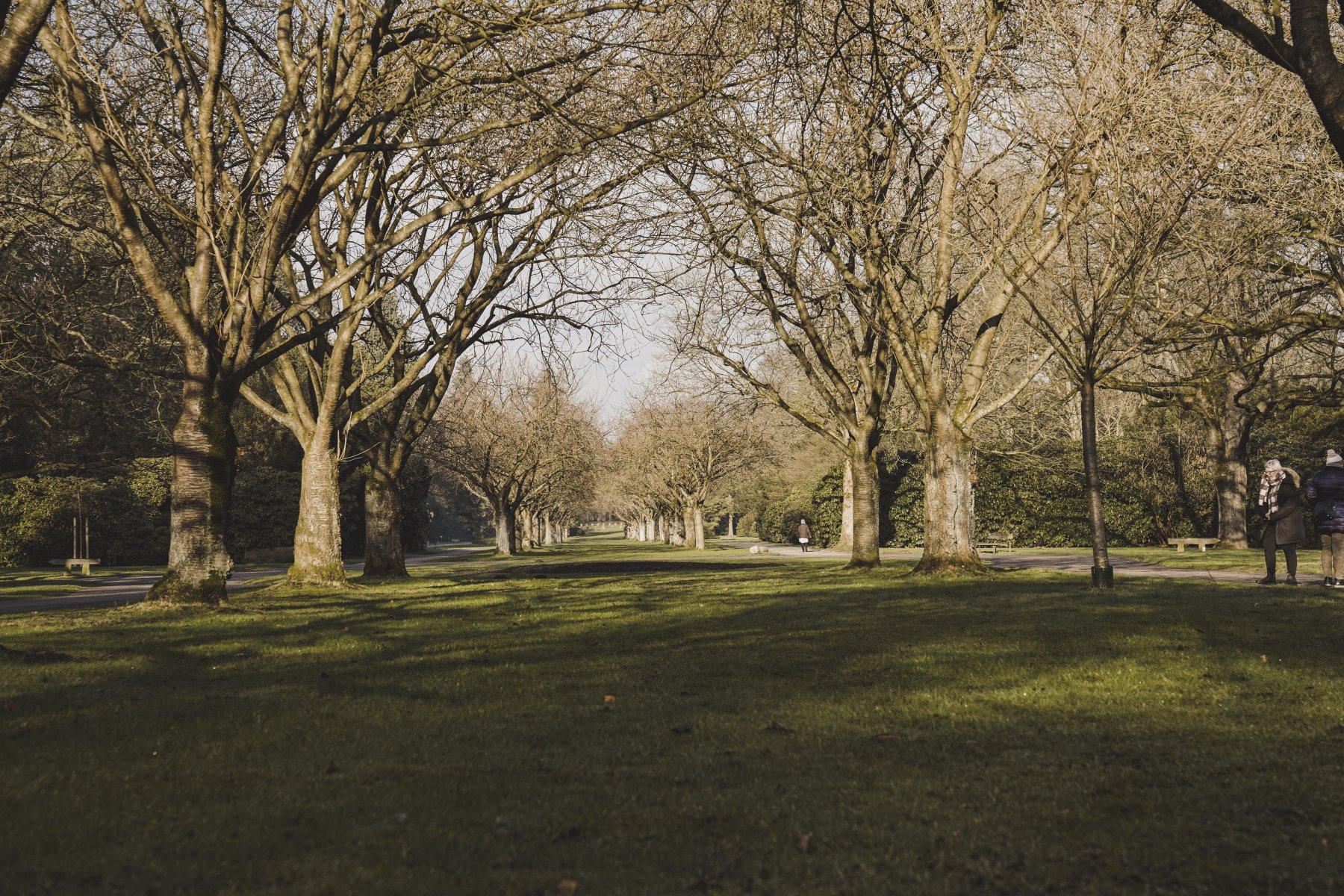 geheimtipp hamburg volkspark wald natur linus kross 5