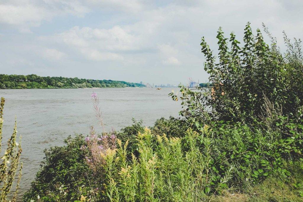 Die Elbe.
