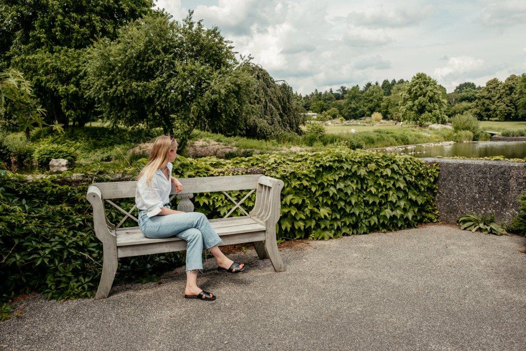 Willkommen im Loki Schmidt Garten, dem Botanischen Garten der Universität Hamburg.