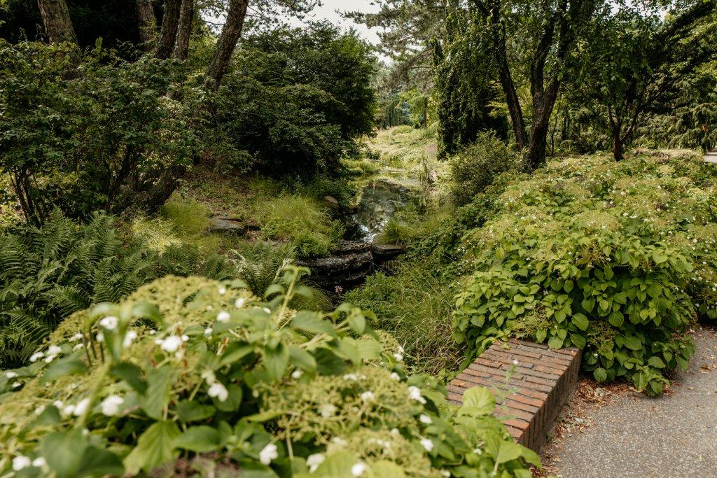 Stundenlang könnt ihr hier entlang an Bächlein, Blumen und Bäumen schlendern.