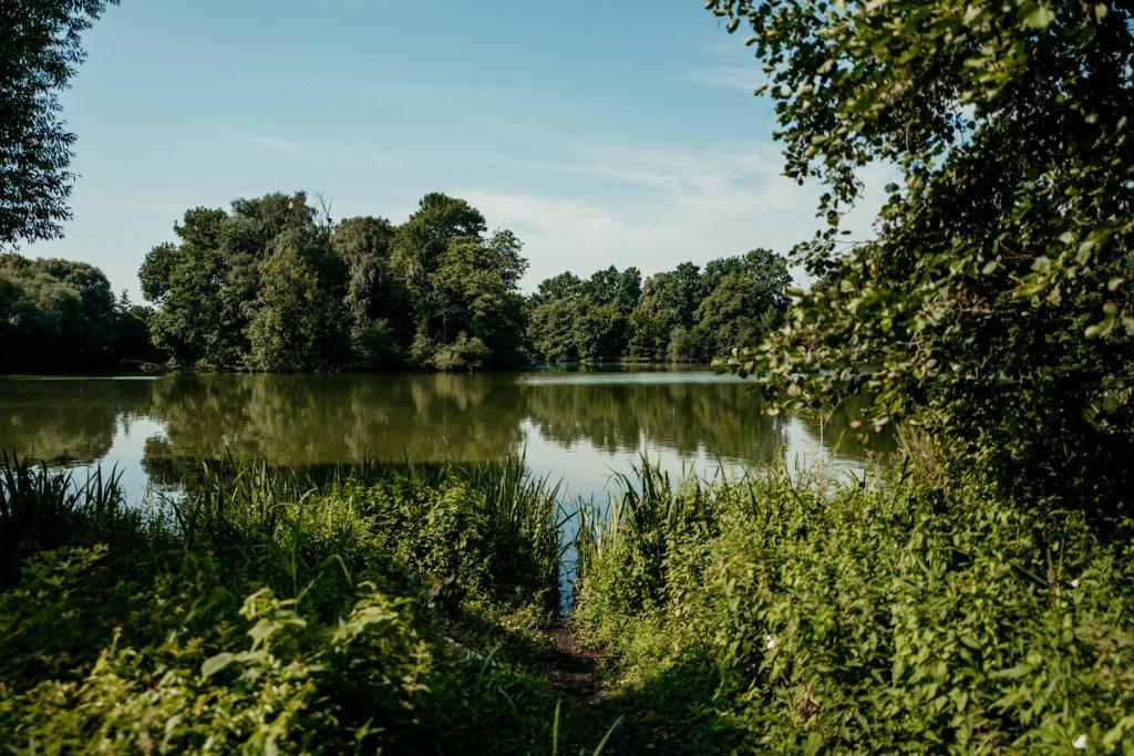 Vor euch liegt der Bramfelder See im Stadtteil Steilshoop.