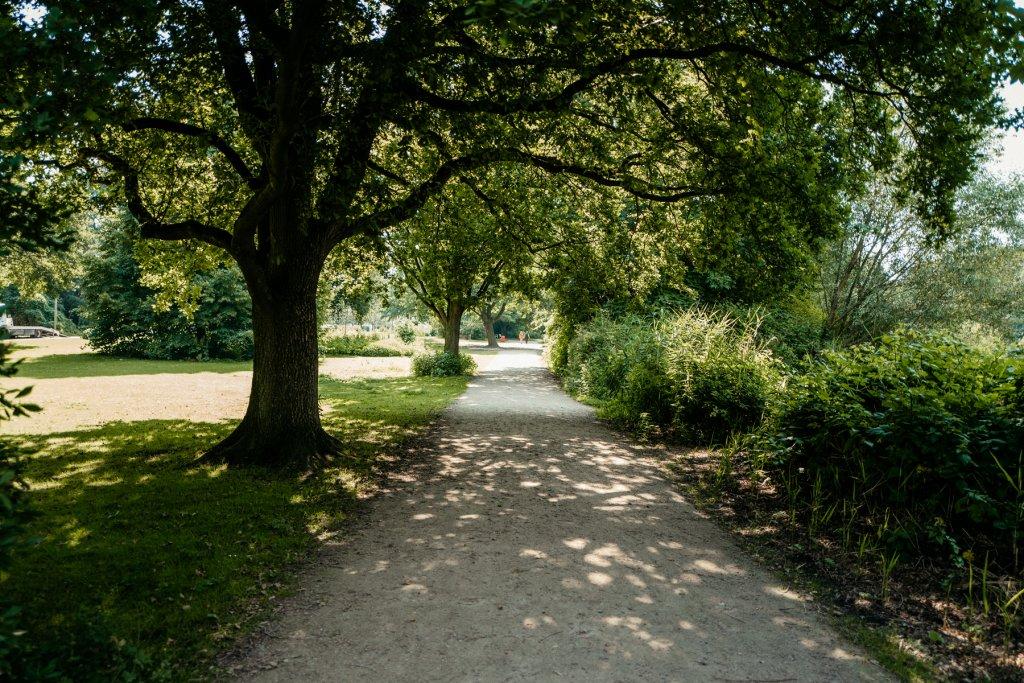 Rund um den See führt ein befestigter Spazierweg.