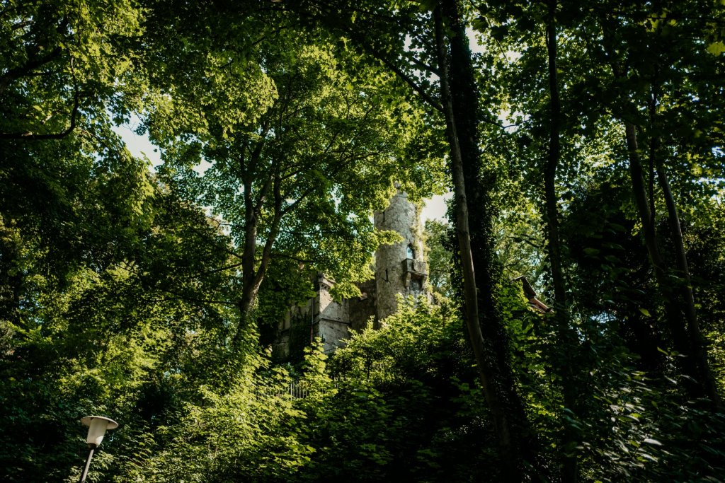 Die Burg Henneberg liegt versteckt zwischen den Baumwipfeln.