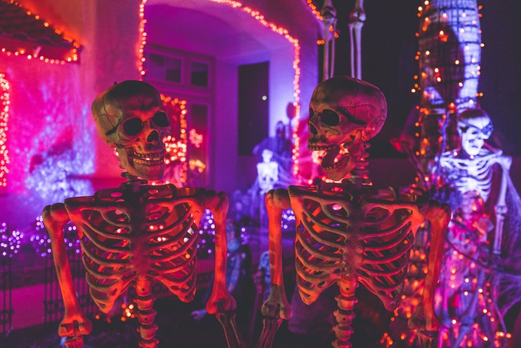 Geheimtipp Hamburg Guide Bucketlist Oktober Halloween – ©Unsplash